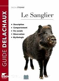 Télécharger ebook gratuit Le sanglier – Description, Comportement, Vie sociale, Observation, Mythologie