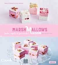 Télécharger ebook gratuit Marshmallows Maison – 80 recettes de la London Marshmallow Company